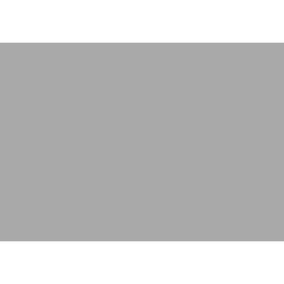 Dinosaur Cases
